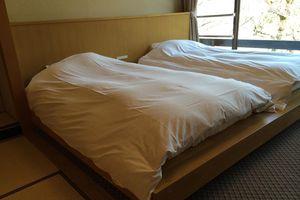 Ireland: Trả 500 euro để ngủ chung giường với người lạ