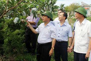 Ninh Bình: Nỗ lực thực hiện các chương trình giảm nghèo