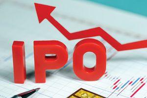 Petrolimex, EVN, HUD… bị bêu tên vì nhiều công ty 'chây ỳ' lên sàn sau cổ phần hóa