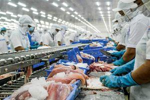 Trung Quốc đẩy mạnh nuôi cá tra, doanh nghiệp Việt đề phòng
