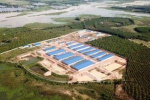 Bộ Công an vào cuộc vụ trang trại quy mô lớn xây dựng trái phép sát hồ Trị An