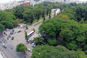 TPHCM giảm gần 50% diện tích công viên cây xanh