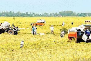 Tổng kết thành tựu 10 năm về nông nghiệp, nông dân, nông thôn