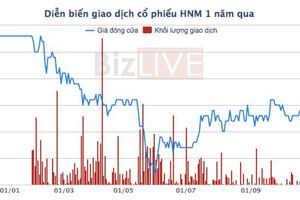Cổ phiếu của HanoiMilk bị đưa vào diện kiểm soát