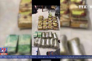 Triệt phá đường dây mua bán 40 kg ma túy