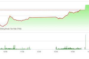 Chứng khoán chiều 21/11: Trụ lớn phục hồi, VN-Index chốt xanh