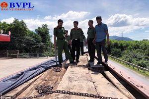 Bắt 2 xe tải đang vận chuyển hơn 60m3 gỗ lậu ra phía Bắc tiêu thụ