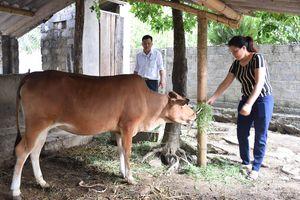 Chủ tịch Trung ương Hội Nông dân: Nghệ An cần xây dựng thế hệ hội viên nông dân mới