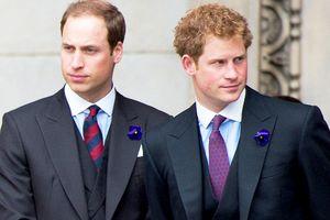 Hoàng tử William và Harry có thực sự thân thiết như bạn nghĩ?
