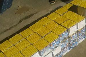 Quảng Bình: Bắt quả tang một ô tô vận chuyển lậu hàng trăm hộp pháo giữa đêm