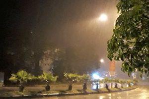 Quảng Nam: Chủ động ứng phó, đề phòng bão lụt