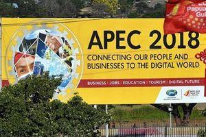 Việt Nam: APEC 26 không ra được Tuyên bố chung là điều đáng tiếc