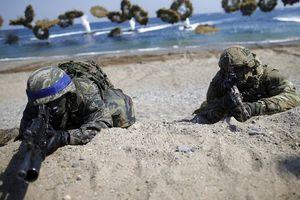Mỹ sẽ giảm quy mô tập trận chung 'Đại bàng non' với Hàn Quốc