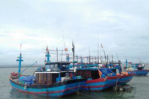 Một tàu cá tránh trú bão bị chìm trên biển