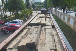 Tạm giữ 2 xe tải gắn biển số giả chở hơn 60 m3 gỗ không giấy tờ