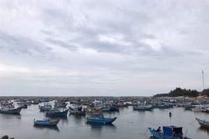 Bình Thuận sẵn sàng di dân trong vùng nguy hiểm
