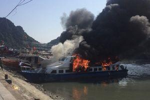 Quảng Ninh: Cháy tàu chuyên tuyến đưa đón khách du lịch ra đảo Cô Tô