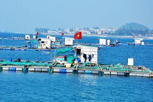 Nâng chất cho thủy sản: Cần chuẩn cả quy hoạch lẫn chất lượng