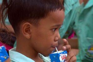 'Barie' nào cho sữa học đường?
