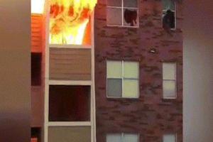 Xem dân Mỹ hợp sức giúp nhau thoát ngọn lửa kinh hoàng