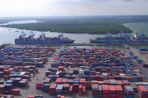 Hỏa tốc gỡ 50 container hải sản bị ách ở cảng