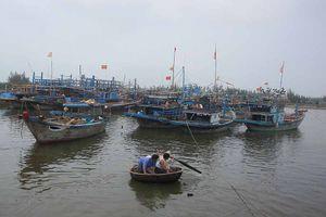 1 tàu chìm, 535 tàu chưa vào tránh trú ở Quảng Ngãi