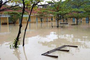 Khánh Hòa: Học sinh các cấp nghỉ học 3 ngày do ảnh hưởng bão số 9