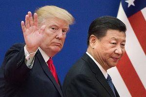 Chính phủ các nước giàu nhất thế giới đồng loạt tăng thuế nhập khẩu hàng hóa