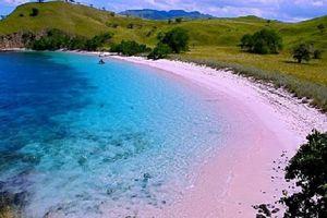 Vẻ đẹp huyền ảo của bãi biển hồng Pantai Merah