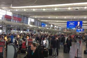 Sân bay Sydney 'tê liệt' do thời tiết bất thường