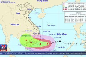 Cập nhật diễn biến của cơn bão số 9