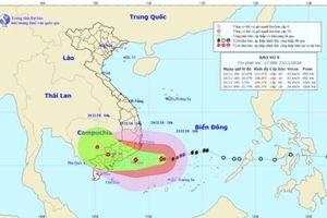 Phòng chống bão số 9: Bà Rịa-Vũng Tàu sẽ di dời gần 160.000 dân