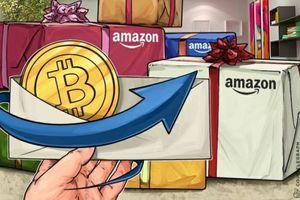 Giá tiền ảo hôm nay (23/11): So sánh việc Bitcoin bị bán tháo với bong bóng dot-com năm 2000