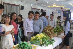 Kiểm soát nguồn gốc, chất lượng sản phẩm nông nghiệp