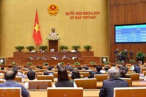 Ban hành nghị quyết phê chuẩn CPTPP cùng các văn kiện liên quan