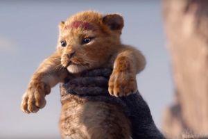 'Vua sư tử' đã trở lại màn ảnh rộng
