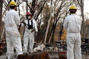 84 người chết, 563 người mất tích trong vụ cháy rừng tại California