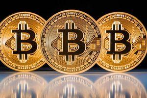 Giá Bitcoin hôm nay 23/11: Giá mỗi Bitcoin chỉ còn 101 triệu đồng