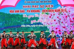 Đa dạng hoạt động văn hóa tại sự kiện Hoa Anh Đào - Pá Khoang - Điện Biên năm 2019