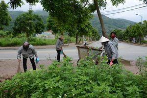 Thái Nguyên: Mô hình điểm xây dựng cảnh quan, môi trường sáng, xanh, sạch, đẹp