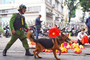 Cảnh khuyển tham gia chống pháo sáng ở trận Việt Nam gặp Campuchia