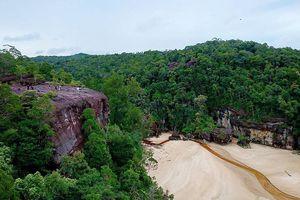 Muốn du lịch vừa có núi, có biển, có động vật hoang dã, cứ đến vườn quốc gia Bako ở Malaysia