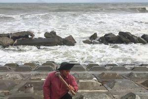 Quảng Nam hối hả dựng kè 28 tỷ đồng giữa mưa bão