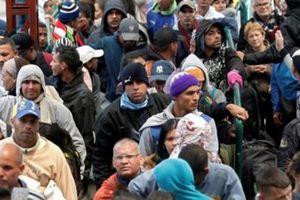 Ecuador cần 550 triệu USD để hỗ trợ người di cư Venezuela