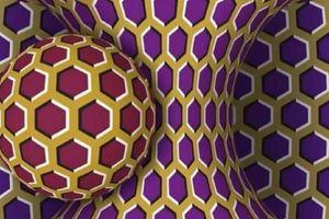 Sự thật về hình ảnh quả cầu quay 'test mức độ stress'