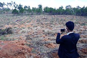 Ngang nhiên phá rừng, chiếm đất trái phép