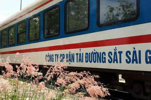 Đường sắt Việt Nam chạy thêm gần 50 đoàn tàu phục vụ Tết Dương lịch 2019