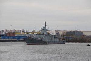 Hải quân Nga 'gây choáng' bằng tàu tên lửa 2.000 tấn mạnh nhất thế giới