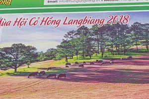 Ban tổ chức Mùa hội cỏ hồng Langbiang bị tố 'xài chùa' hình ảnh