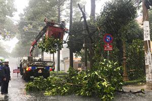 Bà Rịa-Vũng Tàu: Nhanh chóng khắc phục hậu quả mưa bão